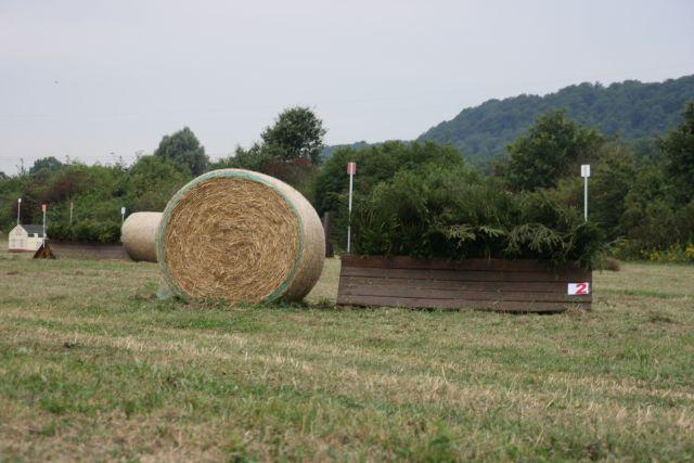 2012-08-18-VS-LH-002.JPG