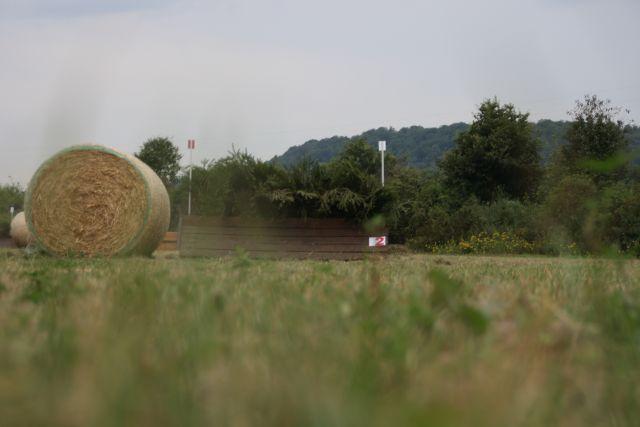 2012-08-18-VS-LH-003.JPG